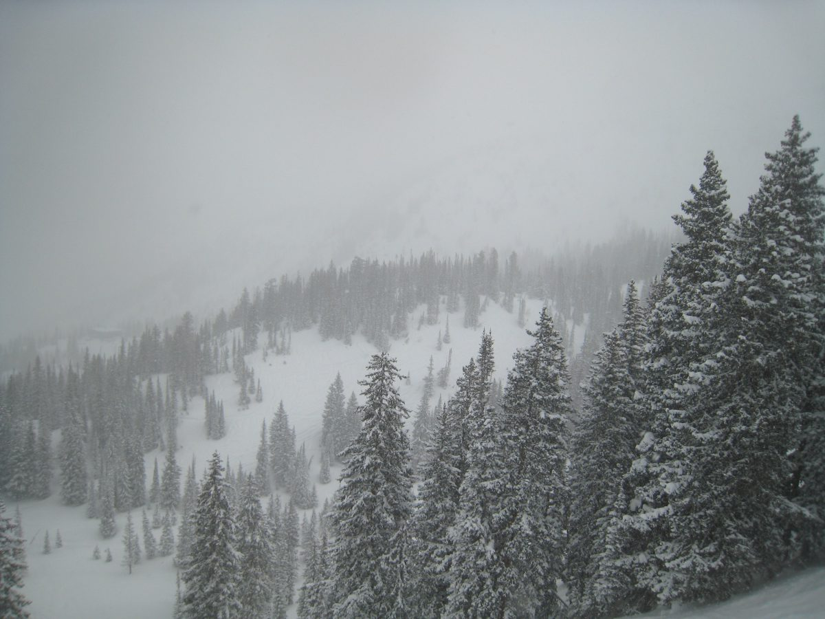 Snowbird & Alta currently rank as my favorite ski resorts!